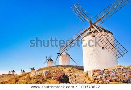 szél · generátor · turbina · nyár · tájkép · fa - stock fotó © hasloo