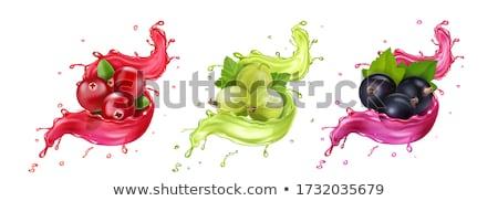 Splash Ice Cube martini glas ijs Stockfoto © stevemc