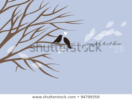 Cards with couples of birds sitting on branches with hearts stock photo © fotoscool