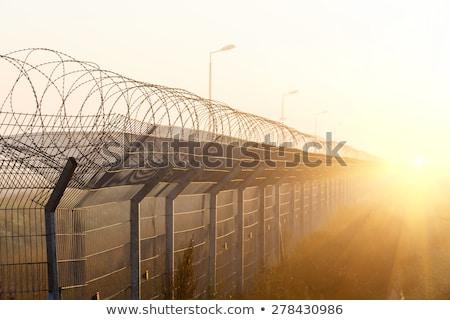 Scheermes draad groene hek top metaal Stockfoto © bobhackett