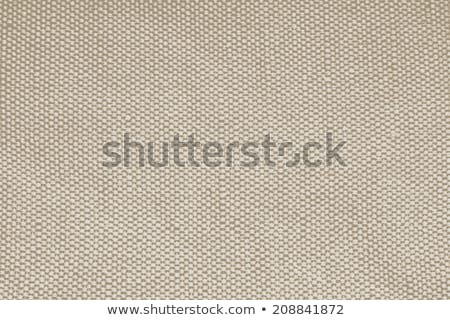 Old artist canvas texture close up. Stock photo © latent