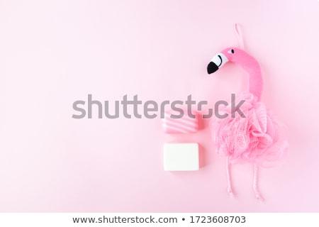 test · törődés · nő · zuhany · hab · fürdőszoba - stock fotó © CandyboxPhoto