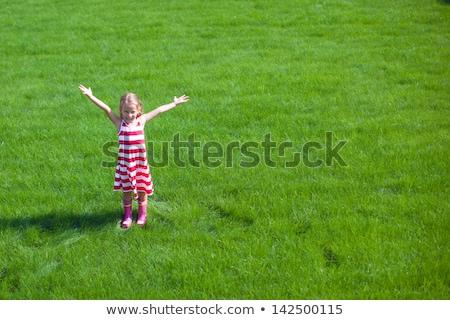 美しい 女の子 腕 立って 芝生 赤ちゃん ストックフォト © travnikovstudio