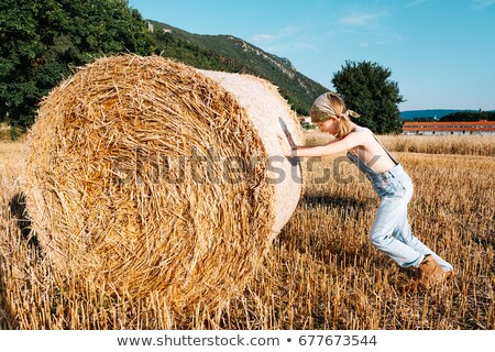 small rural girl on harvest field with straw bales stock photo © vladacanon