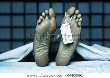 Hulla lábujj címke lövedékek fehér lap Stock fotó © michaklootwijk