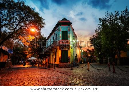 színes · házak · Buenos · Aires · Argentína · fa · utca - stock fotó © elxeneize