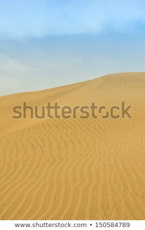 Dunes Of Cerro Blanco Сток-фото © njaj