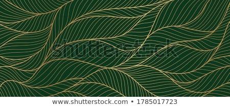 エメラルド 緑 逸品 石 抽象的な 実例 ストックフォト © dengess