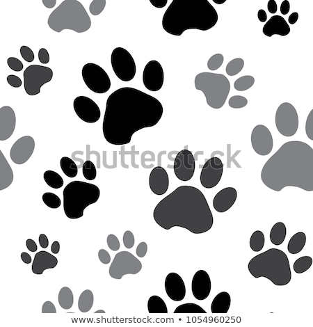 abstract shiny paw prints stock photo © burakowski