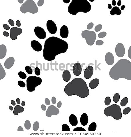 absztrakt · mancs · kutya · terv · tigris · állatok - stock fotó © burakowski