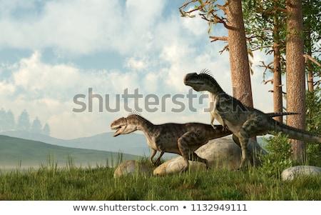 Twee dinosaurus confrontatie midden landschap berg Stockfoto © mariephoto