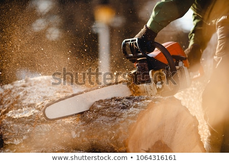 man cutting a tree with a saw stock photo © meinzahn