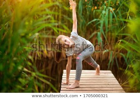 çocuk · iki · aile · kız · soyut - stok fotoğraf © hasloo