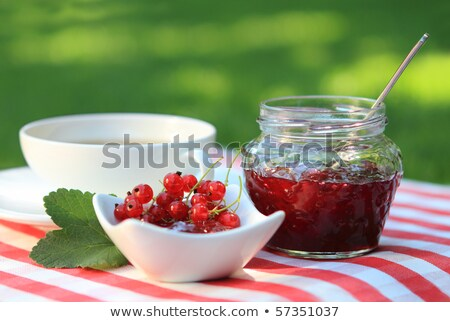red currant jam and tea in the garden stock photo © dashapetrenko