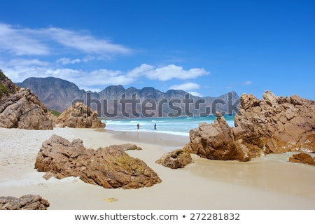 Rocky coast near Cape Town Stock photo © dirkr