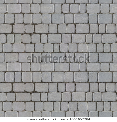 Concrete Decorative Pavement. Seamless Tileable Texture. Stock photo © tashatuvango
