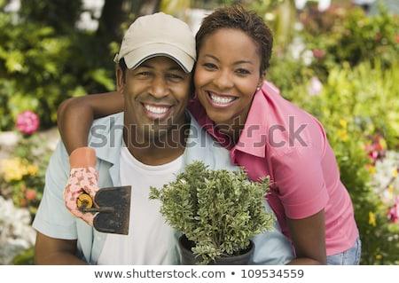 pár · együtt · dolgozni · otthon · rendbehoz · nő · tart - stock fotó © highwaystarz