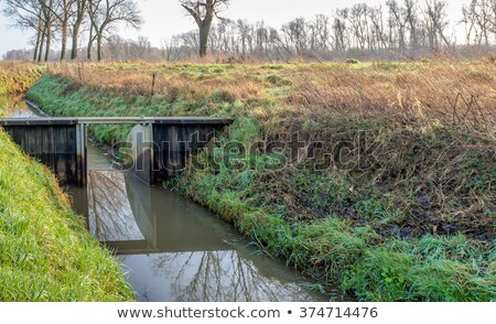 water cascade from irrigation ditch Stock photo © PixelsAway