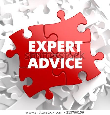 Szakértő tanács piros puzzle fehér üzlet Stock fotó © tashatuvango