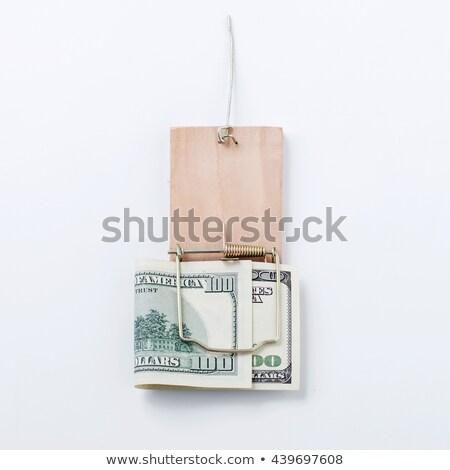 Sto dolarów ustawy myszą trap biały Zdjęcia stock © stevanovicigor