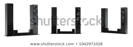 LCD · supervisar · aislado · blanco · ordenador · negro - foto stock © nicemonkey