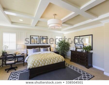 Mooie nieuwe gewoonte slaapkamer interieur nieuw huis Stockfoto © feverpitch