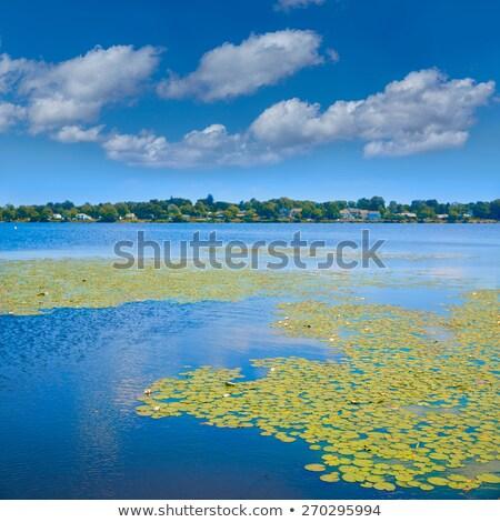 Lago Boston Massachusetts céu água horizonte Foto stock © lunamarina