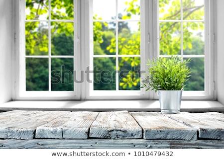 Fenêtre boîte bois maisons réflexion ciel Photo stock © bendzhik