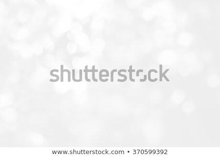 Płatki śniegu świetle szary kolory streszczenie charakter Zdjęcia stock © aliaksandra