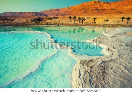 só · Holt-tenger · Izrael · fehér · kövek · akvamarin - stock fotó © zhukow