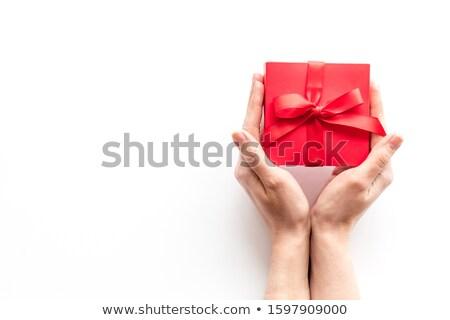若い女の子 · 手 · 提供すること · 美しい · クリスマス · 現在 - ストックフォト © fuzzbones0