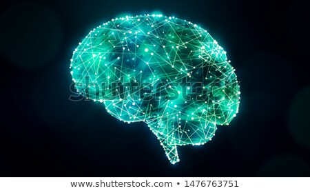 Concept of an Active Human Brain  Stock photo © m_pavlov