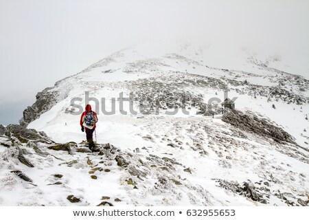 Voet sneeuw winter landschap pad hut Stockfoto © Kotenko