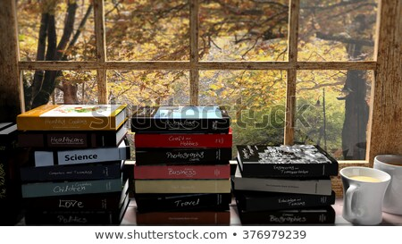 Stack of books 2 stock photo © Paha_L