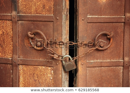 Old closed door Stock photo © fotoquique