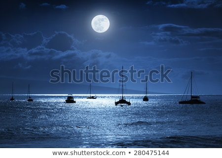 Sailboat at Night Moonlight Stock photo © ankarb