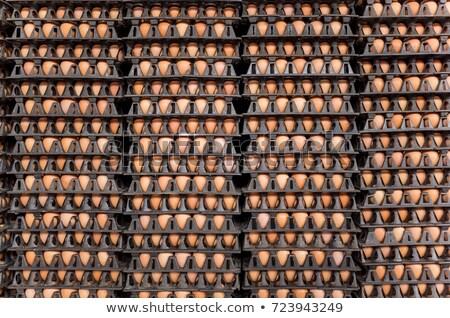 storage container of healthy brown farm eggs stock photo © ozgur