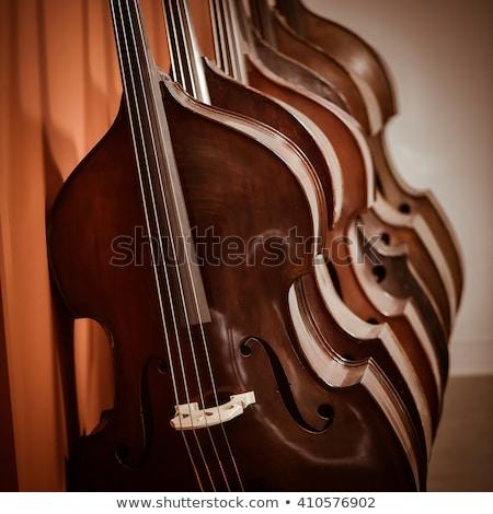 черный · скрипки · белый · музыку - Сток-фото © freeprod
