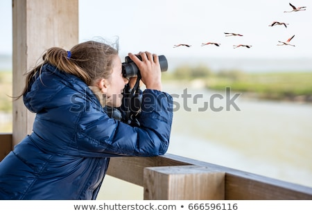A young girl with a bird Stock photo © bluering