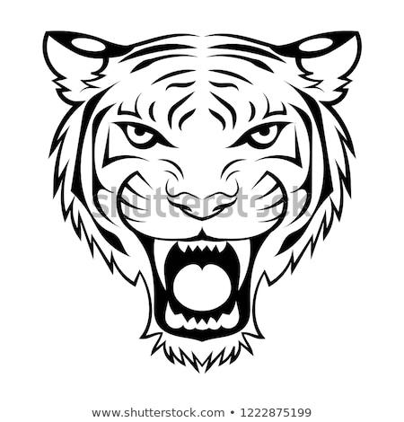 Stock photo: bengal white tiger logotype