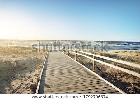 sétál · tenger · homok · nő · fehér · ruha · hát - stock fotó © simply