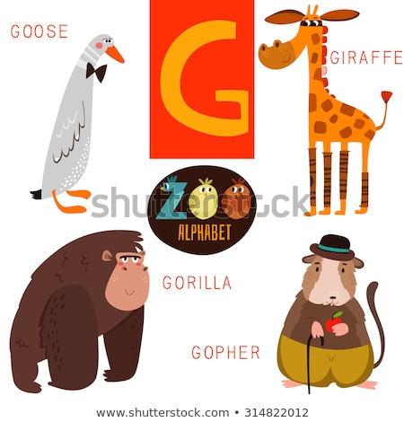 A letter G for giraffe Stock photo © bluering