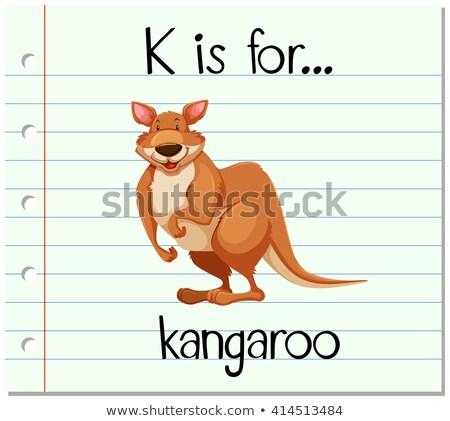 flashcard letter k is for kangaroo stock photo © bluering