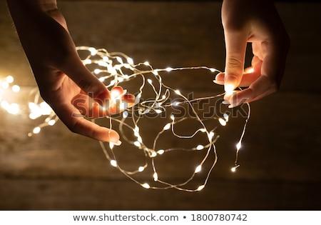 Genç kadın peri ışıklar portre ışık Stok fotoğraf © Massonforstock