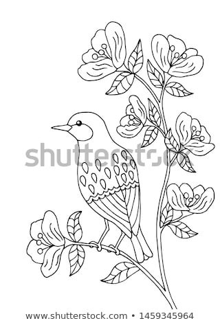 Kuş oturma muhteşem baştankara ağaç Stok fotoğraf © justinb