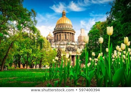 весны русский Солнечный день льда моста Сток-фото © Estea