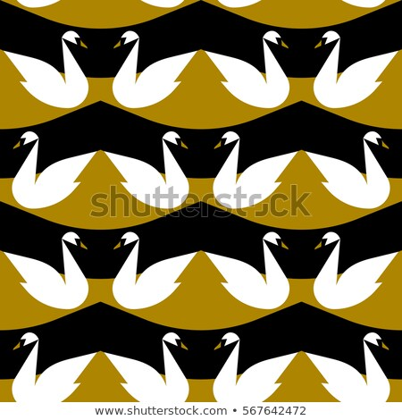 Seamless Vector Background With Noble White Swan Photo stock © ussr