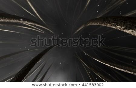 microscopisch · haren · 3d · render - stockfoto © albund