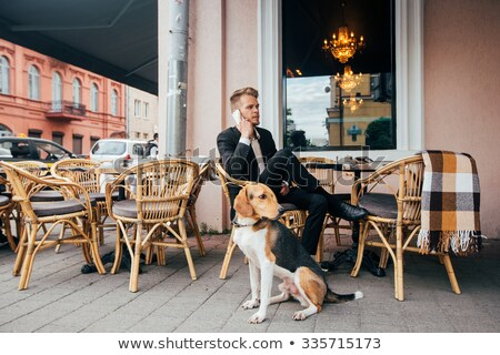 homem · cão · posando · rua · treinamento · primavera - foto stock © tekso