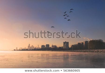 kış · ufuk · çizgisi · gündoğumu · buz · göl · mimari - stok fotoğraf © benkrut
